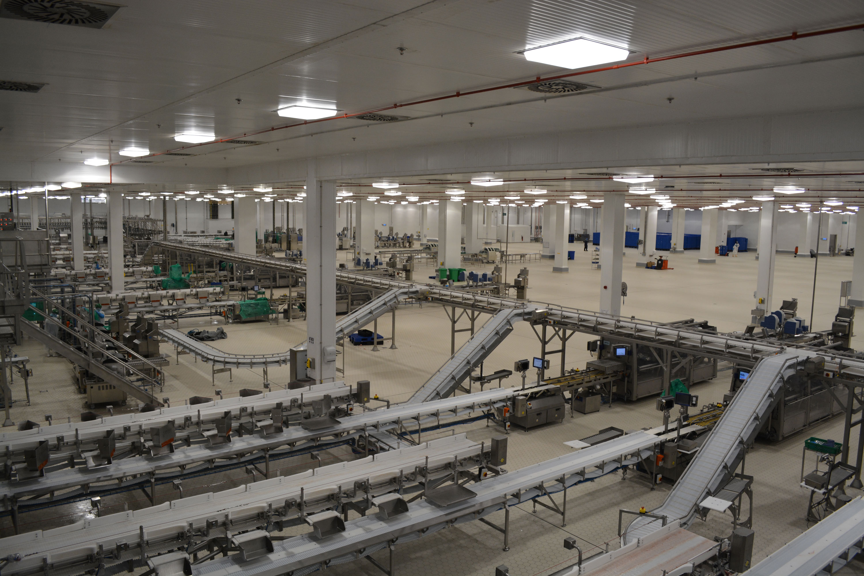Inside view of a very large Poultry Processing Plant
